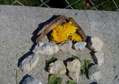 Nives Grčman 1.a - ustvarjanje v naravi